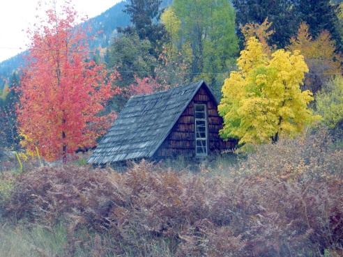 AutumnCabin