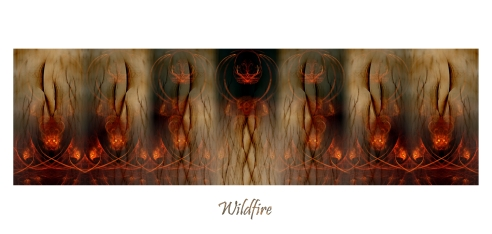 0Wildfire